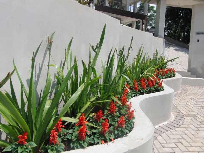 Eco Jardim Serviços de Jardinagem e Paisagismo